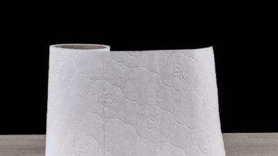 toilet-paper001